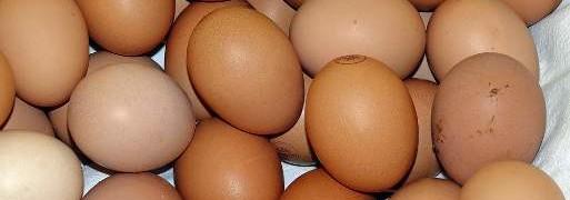 zuppa all'uovo